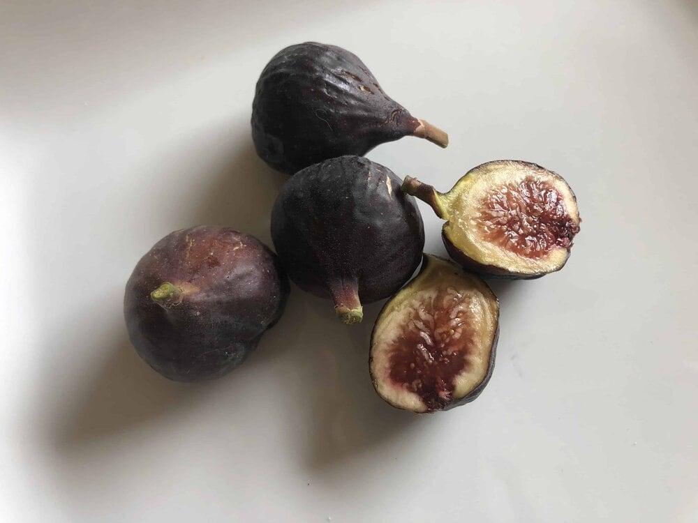 Missouri Girl Blog. Figs. Fig Tree.