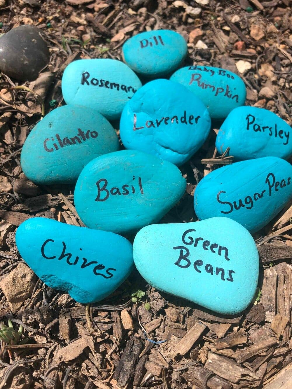 Missouri Girl DIY rock plant markers. These diy plant markers are as easy as they are cute and they cute.