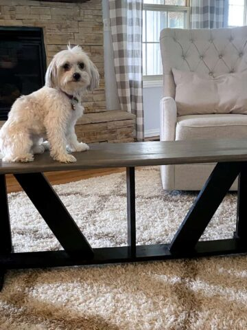 homemade diy black and gray farmhouse bench with dog on top