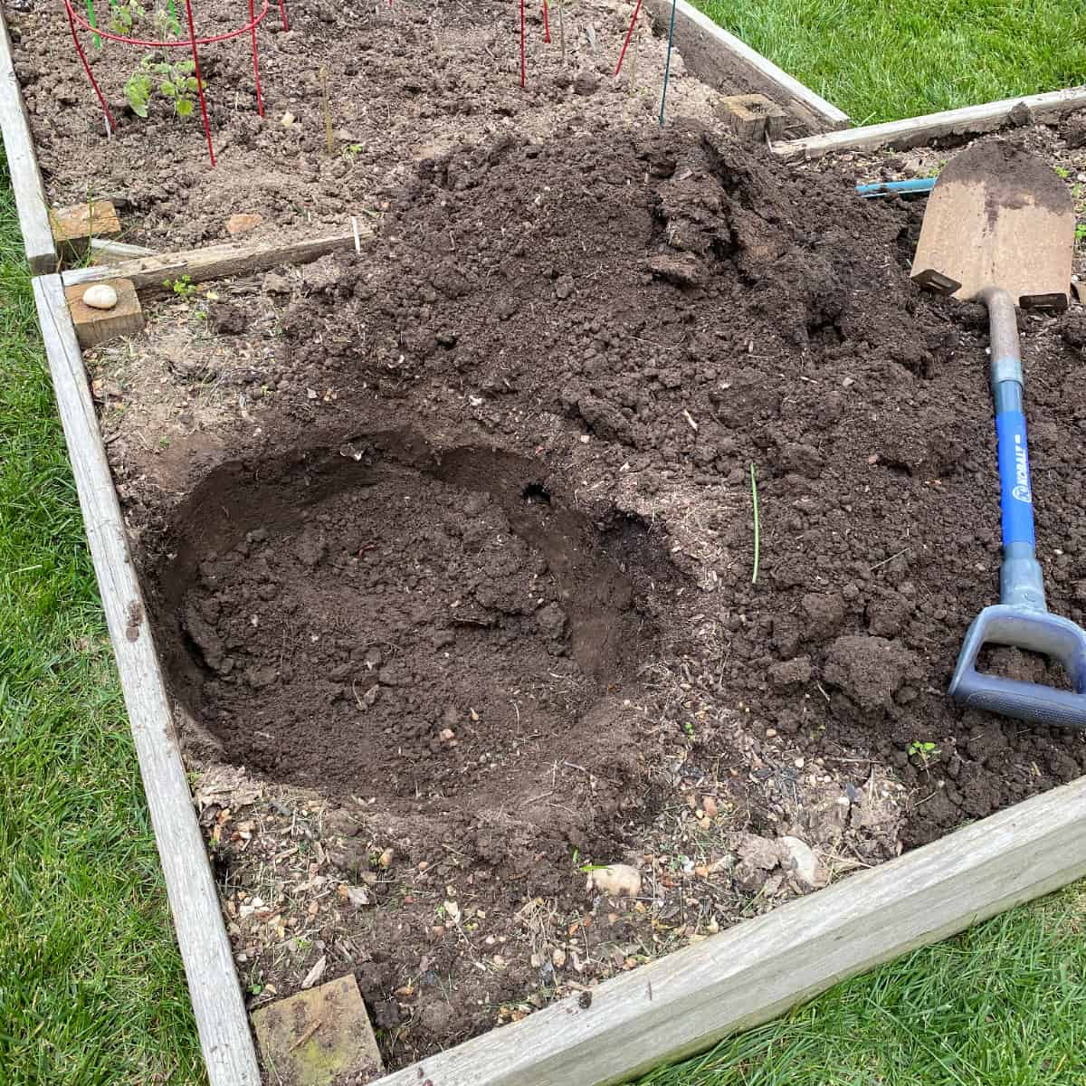 a hole dug in a raised garden bed in preparation for a pumpkin tower